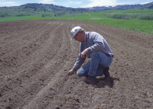 Crop Residue Management in Idaho